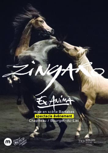 FLYER_ZINGARO