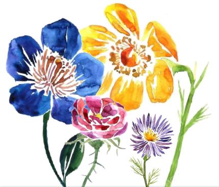 fleur été